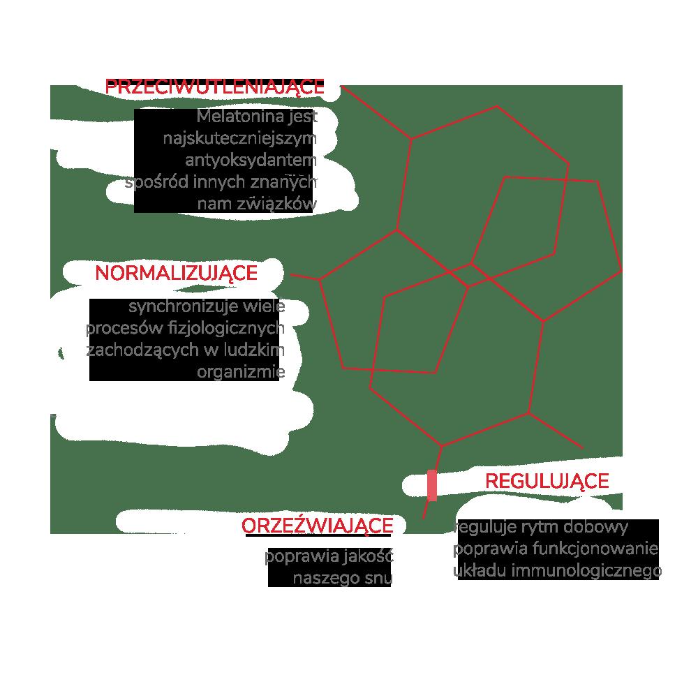 fitomelatonina Sosnowiec